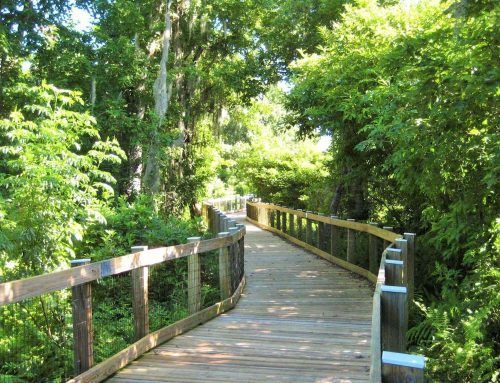 BOARDWALK RENOVATION AT OAKLAND NATURE PRESERVE AWARDED $365,393 GRANT
